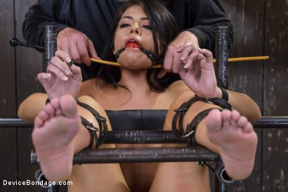 Photo number 7 from Adriana Chechik - Violated and Abused shot for Device Bondage on Kink.com. Featuring Adriana Chechik in hardcore BDSM & Fetish porn.