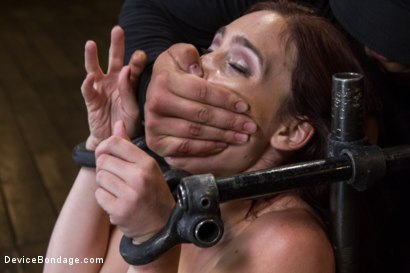 Photo number 11 from Wet Mess shot for Device Bondage on Kink.com. Featuring Jodi Taylor in hardcore BDSM & Fetish porn.