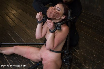 Photo number 15 from Wet Mess shot for Device Bondage on Kink.com. Featuring Jodi Taylor in hardcore BDSM & Fetish porn.