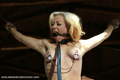 Photo number 8 from Adrianna Nicole and Lee Stone shot for Sex And Submission on Kink.com. Featuring Adrianna Nicole and Lee Stone in hardcore BDSM & Fetish porn.