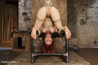 Photo number 11 from Anal Slut Gets Cold Steel Anal Invasion shot for Hogtied on Kink.com. Featuring Penny Pax in hardcore BDSM & Fetish porn.