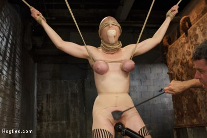 Photo number 7 from Anal Slut Gets Cold Steel Anal Invasion shot for Hogtied on Kink.com. Featuring Penny Pax in hardcore BDSM & Fetish porn.