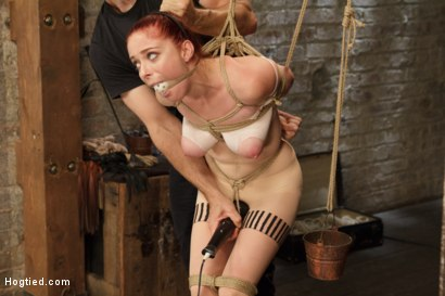 Photo number 6 from Anal Slut Gets Cold Steel Anal Invasion shot for Hogtied on Kink.com. Featuring Penny Pax in hardcore BDSM & Fetish porn.