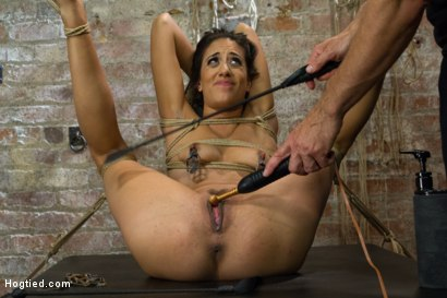 Photo number 7 from Exotic Rope Slut Shows Off  Her Gushing Cunt shot for Hogtied on Kink.com. Featuring Lyla Storm in hardcore BDSM & Fetish porn.