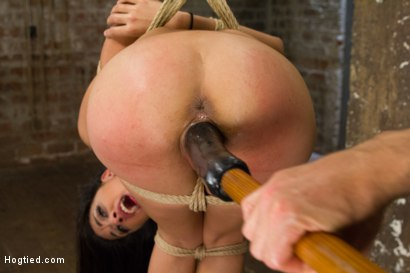 Photo number 10 from Exotic Rope Slut Shows Off  Her Gushing Cunt shot for Hogtied on Kink.com. Featuring Lyla Storm in hardcore BDSM & Fetish porn.