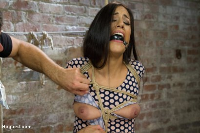 Photo number 2 from Exotic Rope Slut Shows Off  Her Gushing Cunt shot for Hogtied on Kink.com. Featuring Lyla Storm in hardcore BDSM & Fetish porn.