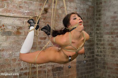 Photo number 9 from Fresh Young Pretty Girl Destroyed by Bondage and Orgasms shot for Hogtied on Kink.com. Featuring Adriana Chechik in hardcore BDSM & Fetish porn.
