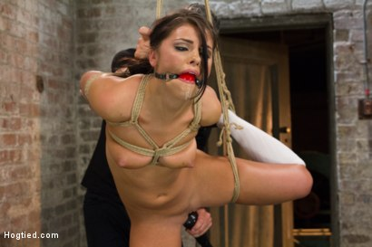Photo number 5 from Fresh Young Pretty Girl Destroyed by Bondage and Orgasms shot for Hogtied on Kink.com. Featuring Adriana Chechik in hardcore BDSM & Fetish porn.