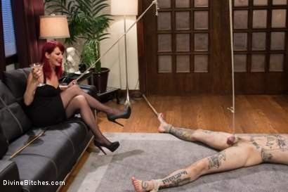 Photo number 15 from Happy Birthday Maitresse!!: Prostate Virgin maleXslave!!! shot for Divine Bitches on Kink.com. Featuring Maitresse Madeline Marlowe  and Ruckus in hardcore BDSM & Fetish porn.