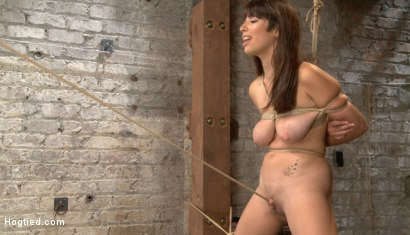 Photo number 12 from Smashing Brand New Big Tits, Beautiful Pussy shot for Hogtied on Kink.com. Featuring Nina Lopez in hardcore BDSM & Fetish porn.