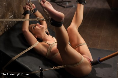 Photo number 5 from The Training of a Model or a Slave? Day Two shot for The Training Of O on Kink.com. Featuring Adriana Chechik and Mickey Mod in hardcore BDSM & Fetish porn.