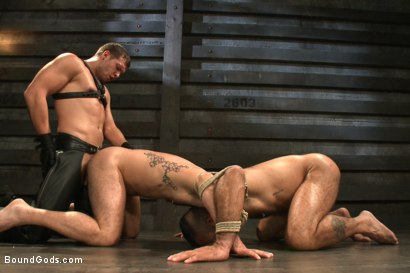 Photo number 14 from Alessio and Rogue - Real Life Couple Series shot for Bound Gods on Kink.com. Featuring Rogue Status, Hayden Richards and Alessio Romero in hardcore BDSM & Fetish porn.
