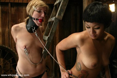 Photo number 11 from DragonLily and Jolene shot for Whipped Ass on Kink.com. Featuring Jolene and DragonLily in hardcore BDSM & Fetish porn.