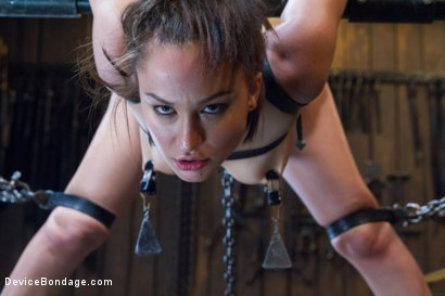 Photo number 10 from Gabriella's Misery shot for Device Bondage on Kink.com. Featuring Gabriella Paltrova in hardcore BDSM & Fetish porn.