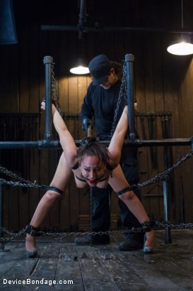 Photo number 12 from Gabriella's Misery shot for Device Bondage on Kink.com. Featuring Gabriella Paltrova in hardcore BDSM & Fetish porn.