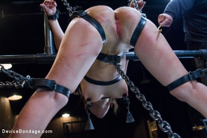 Photo number 14 from Gabriella's Misery shot for Device Bondage on Kink.com. Featuring Gabriella Paltrova in hardcore BDSM & Fetish porn.