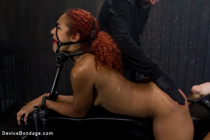 Photo number 11 from Slut on Display shot for Device Bondage on Kink.com. Featuring Daisy Ducati in hardcore BDSM & Fetish porn.