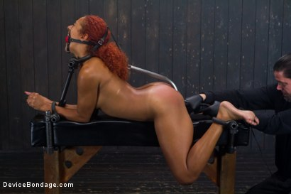 Photo number 15 from Slut on Display shot for Device Bondage on Kink.com. Featuring Daisy Ducati in hardcore BDSM & Fetish porn.
