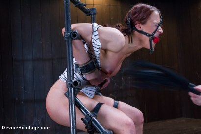 Photo number 1 from Chain Reaction shot for Device Bondage on Kink.com. Featuring Cheyenne Jewel in hardcore BDSM & Fetish porn.