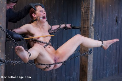 Photo number 7 from Chain Reaction shot for Device Bondage on Kink.com. Featuring Cheyenne Jewel in hardcore BDSM & Fetish porn.