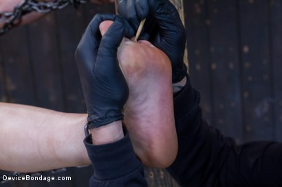 Photo number 9 from Chain Reaction shot for Device Bondage on Kink.com. Featuring Cheyenne Jewel in hardcore BDSM & Fetish porn.