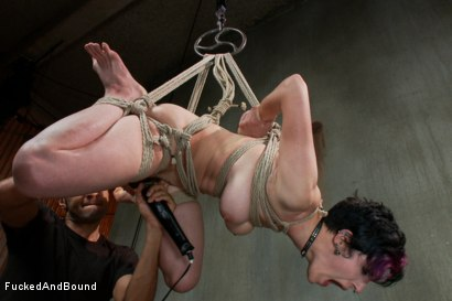 Photo number 10 from Proven Whore shot for Fucked and Bound on Kink.com. Featuring Mickey Mod and Iona Grace in hardcore BDSM & Fetish porn.