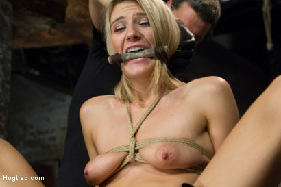Photo number 13 from Beautiful First Timer Gets Stretched and Nailed shot for Hogtied on Kink.com. Featuring Amanda Tate in hardcore BDSM & Fetish porn.
