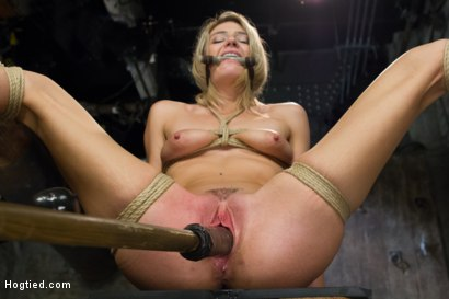 Photo number 11 from Beautiful First Timer Gets Stretched and Nailed shot for Hogtied on Kink.com. Featuring Amanda Tate in hardcore BDSM & Fetish porn.