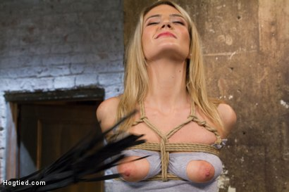 Photo number 4 from Beautiful First Timer Gets Stretched and Nailed shot for Hogtied on Kink.com. Featuring Amanda Tate in hardcore BDSM & Fetish porn.