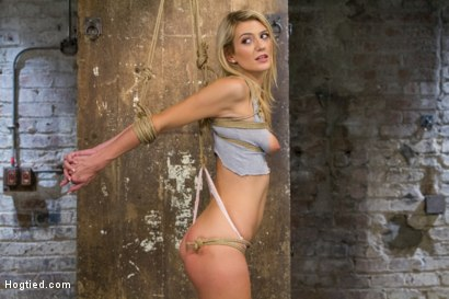 Photo number 3 from Beautiful First Timer Gets Stretched and Nailed shot for Hogtied on Kink.com. Featuring Amanda Tate in hardcore BDSM & Fetish porn.
