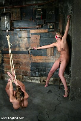 Photo number 13 from Sasha Sparks and Lacie Hart shot for Hogtied on Kink.com. Featuring Lacie Hart and Sasha Sparks in hardcore BDSM & Fetish porn.