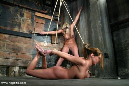 Photo number 14 from Sasha Sparks and Lacie Hart shot for Hogtied on Kink.com. Featuring Lacie Hart and Sasha Sparks in hardcore BDSM & Fetish porn.