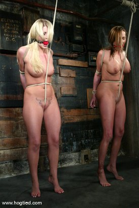Photo number 4 from Sasha Sparks and Lacie Hart shot for Hogtied on Kink.com. Featuring Lacie Hart and Sasha Sparks in hardcore BDSM & Fetish porn.