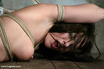 Photo number 13 from Dana DeArmond shot for Hogtied on Kink.com. Featuring Dana DeArmond in hardcore BDSM & Fetish porn.