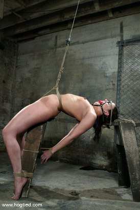 Photo number 7 from Dana DeArmond shot for Hogtied on Kink.com. Featuring Dana DeArmond in hardcore BDSM & Fetish porn.
