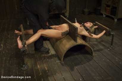 Photo number 8 from Hot Blonde is devastated by sadistic torment and screaming orgasms!!  shot for Device Bondage on Kink.com. Featuring Orlando and Dallas Blaze in hardcore BDSM & Fetish porn.