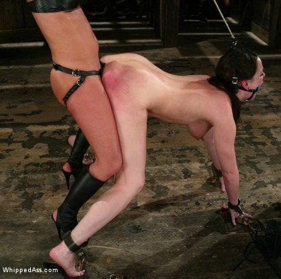 Photo number 12 from CLASSIC ARCHIVE SHOOT! Sandra Romain and Dana DeArmond! shot for Whipped Ass on Kink.com. Featuring Sandra Romain and Dana DeArmond in hardcore BDSM & Fetish porn.