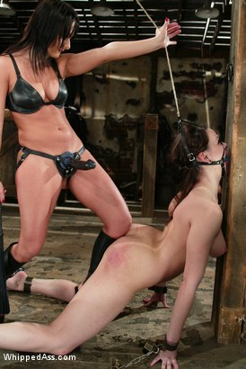 Photo number 10 from CLASSIC ARCHIVE SHOOT! Sandra Romain and Dana DeArmond! shot for Whipped Ass on Kink.com. Featuring Sandra Romain and Dana DeArmond in hardcore BDSM & Fetish porn.