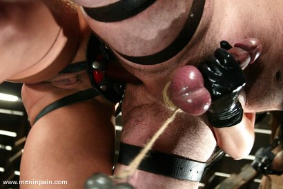 Photo number 9 from Tory Lane and Wild Bill shot for Men In Pain on Kink.com. Featuring Tory Lane and Wild Bill in hardcore BDSM & Fetish porn.