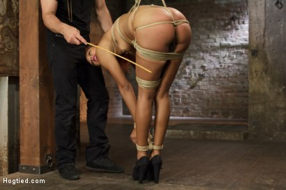 Photo number 11 from Riding Ducati  shot for Hogtied on Kink.com. Featuring Daisy Ducati in hardcore BDSM & Fetish porn.