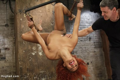 Photo number 6 from Riding Ducati  shot for Hogtied on Kink.com. Featuring Daisy Ducati in hardcore BDSM & Fetish porn.