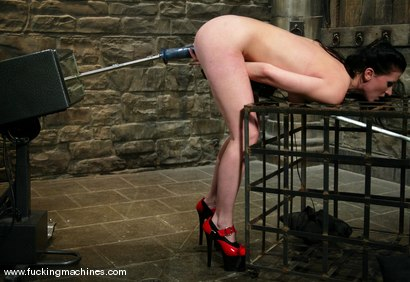 Photo number 8 from Ariel X shot for Fucking Machines on Kink.com. Featuring Ariel X in hardcore BDSM & Fetish porn.