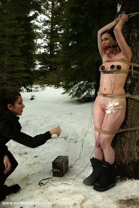 Photo number 1 from Ariel X and Princess Donna Dolore shot for Wired Pussy on Kink.com. Featuring Ariel X and Princess Donna Dolore in hardcore BDSM & Fetish porn.