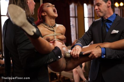 Photo number 5 from Daisy Ducati Petitions to Serve the House, and Anal Slut Zoey Monroe Gets Fucked in the Ass shot for The Upper Floor on Kink.com. Featuring Bill Bailey, Daisy Ducati and Zoey Monroe in hardcore BDSM & Fetish porn.