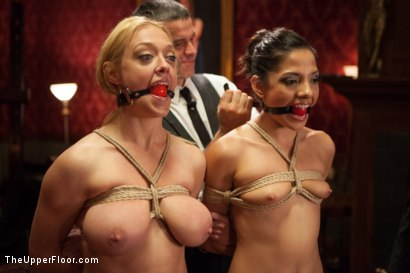 Photo number 1 from Big Tits Blonde Slave Suspended for Anal Fuck vs. Petite Cock Sucker shot for The Upper Floor on Kink.com. Featuring Evilyn Fierce, Owen Gray and Dee Williams in hardcore BDSM & Fetish porn.