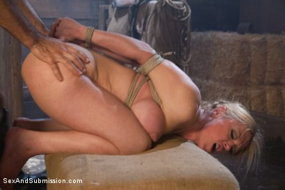 Photo number 8 from The Slave Auction: Darling Gets Ass Fucked in Strict Bondage!  shot for Sex And Submission on Kink.com. Featuring Dee Williams and Steven St. Croix in hardcore BDSM & Fetish porn.