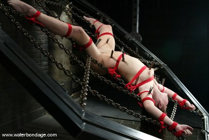 Photo number 8 from Sarah Blake shot for Water Bondage on Kink.com. Featuring Sarah Blake in hardcore BDSM & Fetish porn.