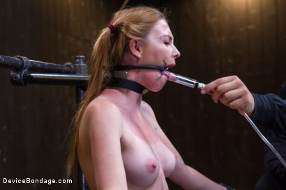 Photo number 8 from Seeing Red shot for Device Bondage on Kink.com. Featuring Orlando and Marie McCray in hardcore BDSM & Fetish porn.