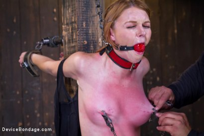 Photo number 2 from Seeing Red shot for Device Bondage on Kink.com. Featuring Orlando and Marie McCray in hardcore BDSM & Fetish porn.