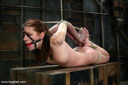 Photo number 9 from Sarah Blake shot for Hogtied on Kink.com. Featuring Sarah Blake in hardcore BDSM & Fetish porn.